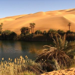 Desert Mirage (6 Days – 5 Nights ) in Egypt
