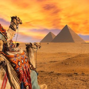 King Tut ( 8 Days – 7 Nights ) in Egypt